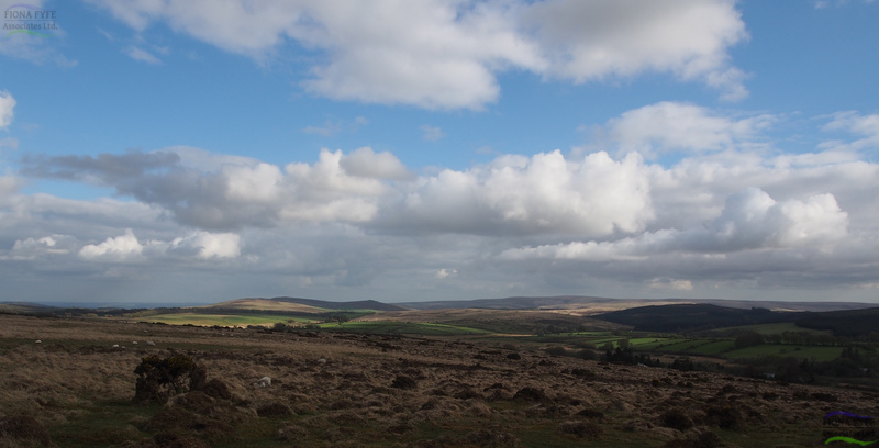 Dartmoor Historic Environment Character Assessment</h1><h2 class='entry-subtitle'>With University of Leicester Archaeological Services and Countryscape (2014)</h2>