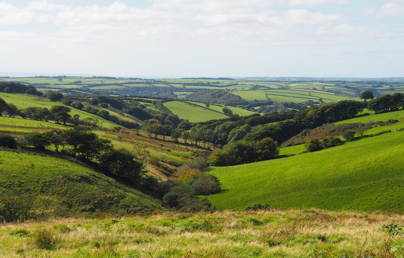 Exmoor National Park Landscape Character Assessment Update</h1><h2 class='entry-subtitle'>With Countryscape, Alison Farmer Associates and Douglas Mitcham (2017)</h2>