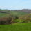Blackdown Hills Landscape Enhancement Initiative